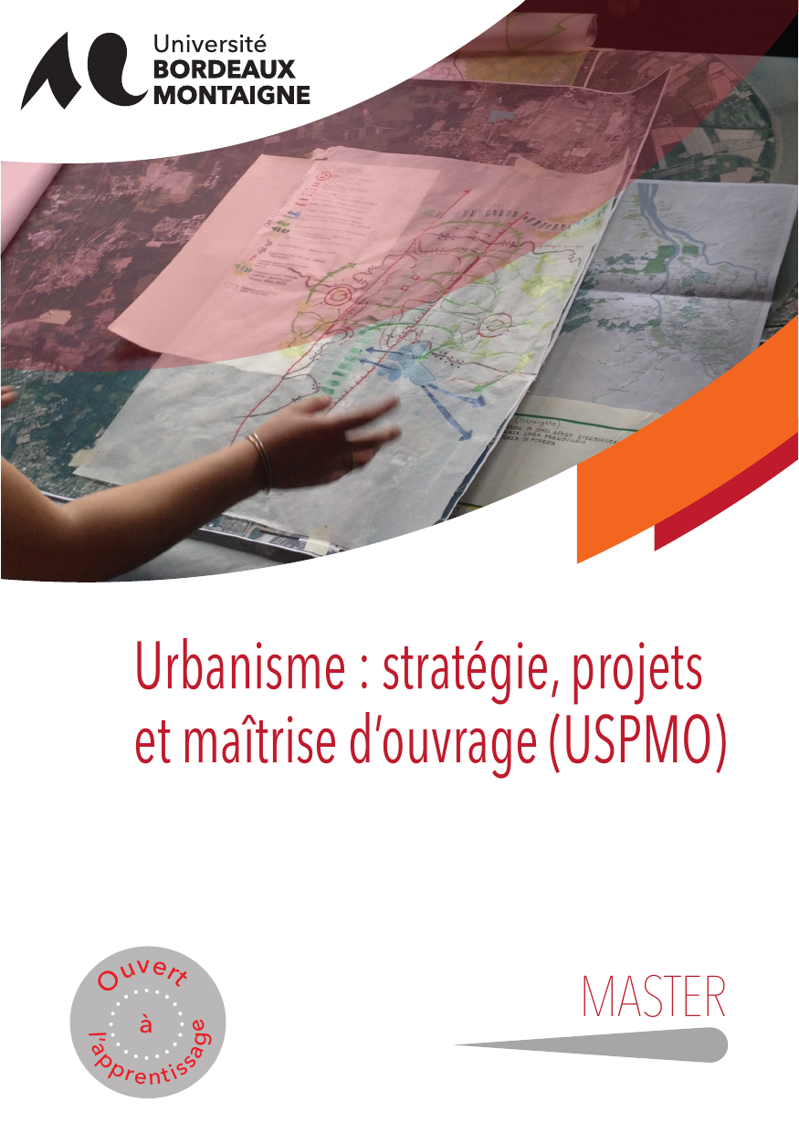 Master urbanisme strat gie projets ma trise d 39 ouvrage for Maitrise d ouvrage anglais